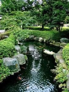 Japan Gyokuro Yamakai  bei Teesorte