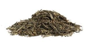 Hilft grüner Tee gegen Krebs Teesorte