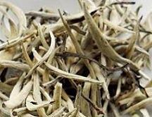 Ist weißer Tee für Kenner -Teesorte