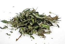 Weißer Tee China Pai Mu Tan bei Teesorte