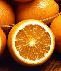 Weißer Tee Orange Fruit bei Teesorte