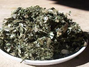 Graviola Tee