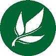 Teesorte Blatt Logo Werbegeschäft