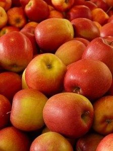 Früchtetee Alles In Apfel bei Teesorte