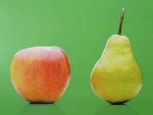 Früchtetee Apfel Birne bei Teesorte