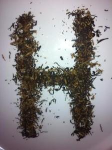 Assam Harmutty - Ältester Teegarten