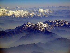 Darjeeling Maharani Hills FTGFOP1 bei Teesorte