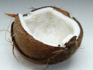 Schwarztee Kokos bei Teesorte