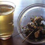 Nonigravtee bei Teesorte