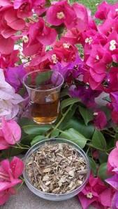 Katzenkralle Tee Sonderpeis