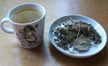 Tee Cerebro y Mente bei Teesorte