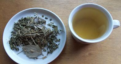 Cerebro Mente Tee bei Teesorte