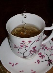Teesort: Graviola Tee Wirkung