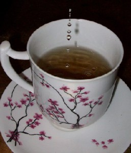Teesorte Graviola Heilung oder Genuss