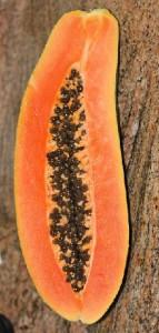 Die Teesorte Moringalicious ist mit Papayastückchen