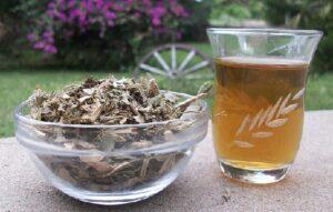 Frage bei Teesorte: Ist Katzenkralle ein Arzneimittel?