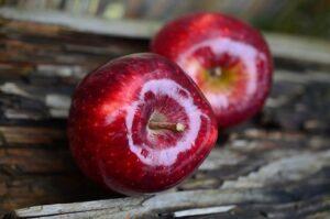 Früchtetee Apfel Splash - leckere Teesorte