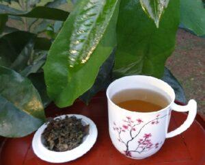 Kann Graviola Tee Krankheiten heilen