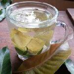 Mangoblätter Tee