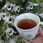Disminuir Tee (Bluthochdruck)