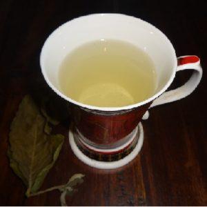 Paraguay Teesorte Guavenblätter Tee